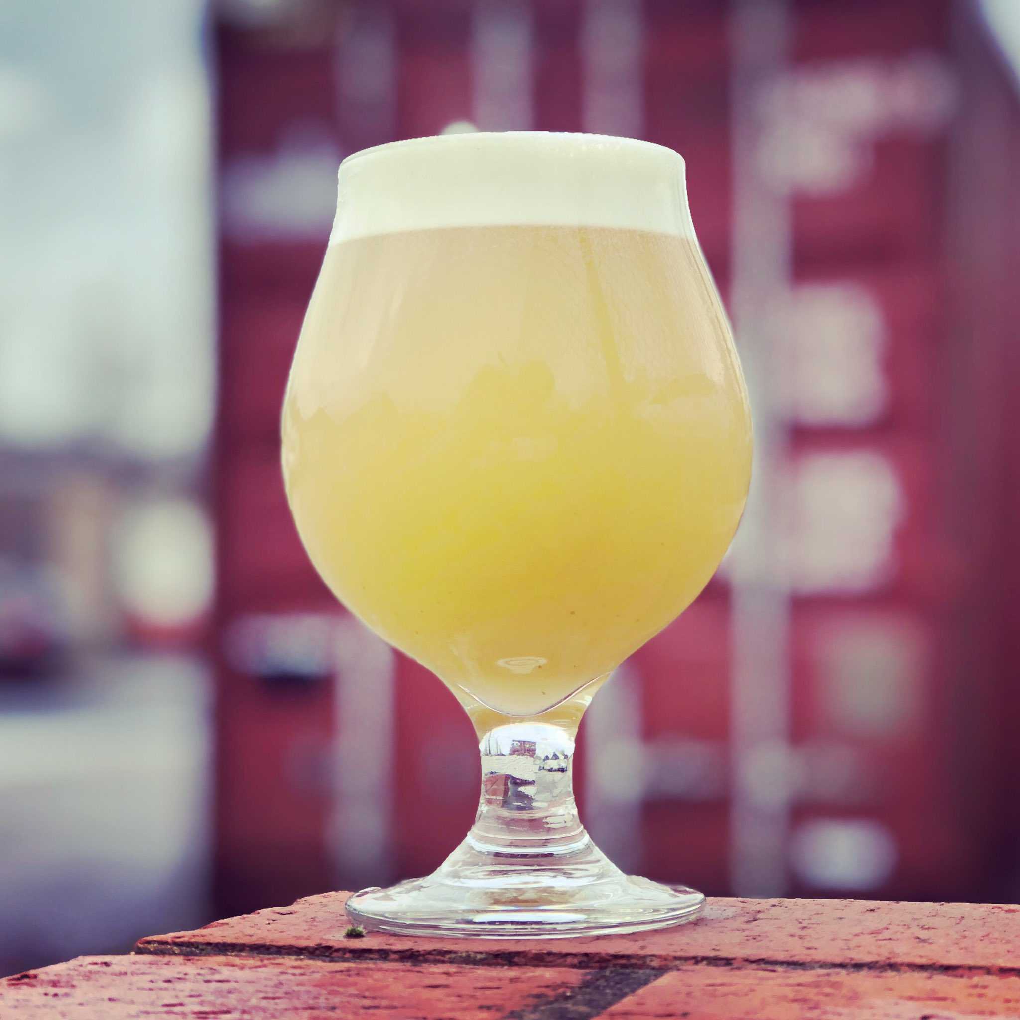 Glasshouse Beer Co